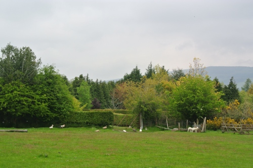 Greenan Farm