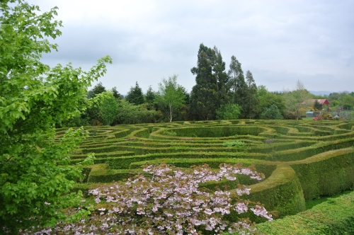 Traditional maze