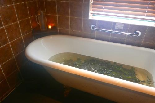 voya seaweed bath